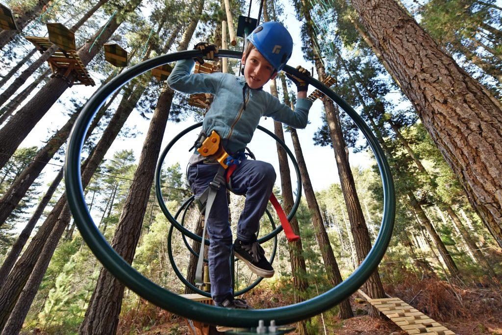 Trees-Adventure-Nowra-Park